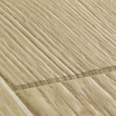 Дуб песочный